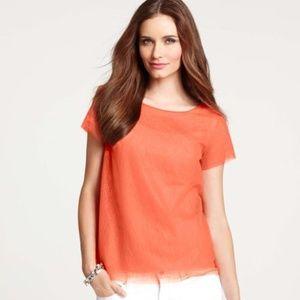 Ann Taylor Orange Sheer Lace Top Size XS